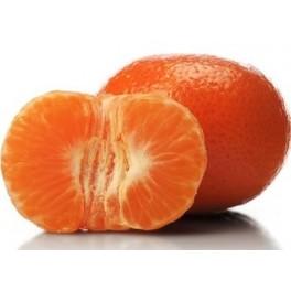 Clementine bio cal I, Italia