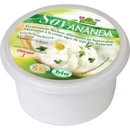 Soyananda alternativa cu soia pentru smantana, 200 gr