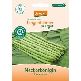 "Bingenheimer seminte fasole verde ""Neckarkonigin"""