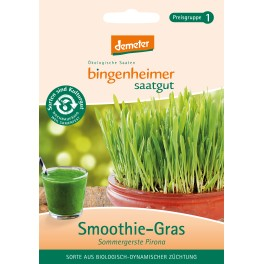 Bingenheimer seminte iarba de grau, 60 gr