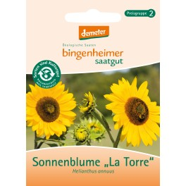 Seminte de floarea soarelui Bingenheimer, flori multiple, 3 gr