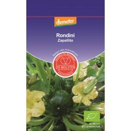 DE Bolster Zucchini Rondini Zapalito KP, 1x 3 gr